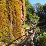 Steg am Nohner Wasserfall