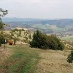 Aussicht vom Hönselberg in Niederehe in der Vulkaneifel