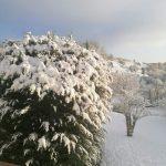 Schnee in der Vulkaneifel lädt zum Entspannen in einer Ferienwohnung ein